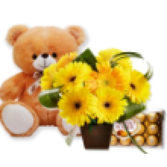Arranjo de Flores, Bombons e Pelúcia Você é Luz